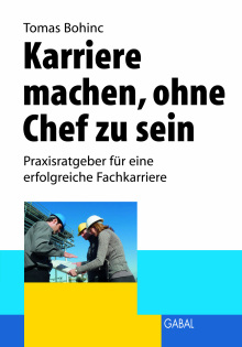 Karriere Machen Ohne Chef Zu Sein Tomas Bohinc E Book Pdf