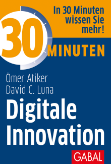 30 Minuten Digitale Innovation (Buchcover)